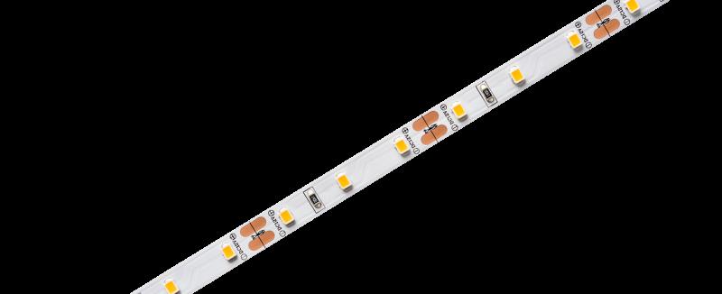 FITA STELLATECH 12V IP20 5W/m LED